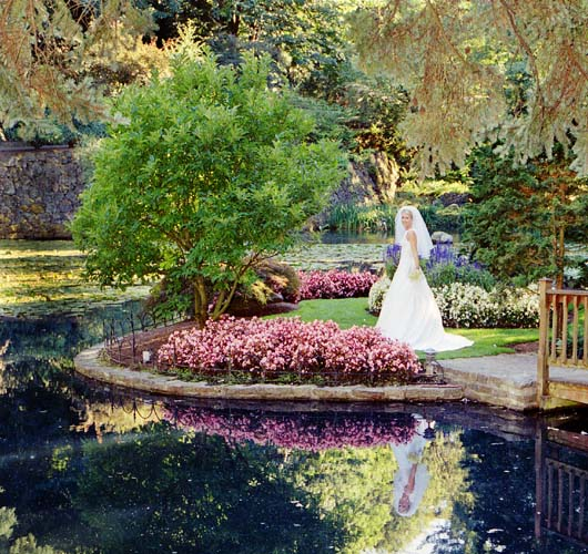 most beautiful wedding venues